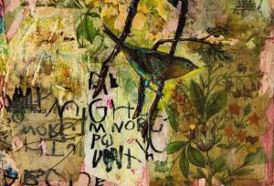 mainpage_birds
